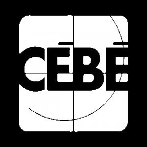 adaptive_client_logo-04